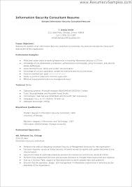 It Consultant Resume Sample It Consultant Resume Sample Cv Consulting Template Word