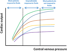 Central Venous Pressure Measurements Should We Measure The Central Venous Pressure To Guide Fluid
