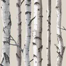 TREES-amp-LEAVES-WALLPAPER-WOOD-BRANCHES-BIRCH-PUSSY-