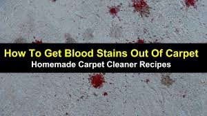 how to get blood stains out of carpet main img