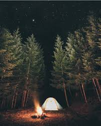 camping in the woods at night. Summer Camping Planning In The Woods At Night F