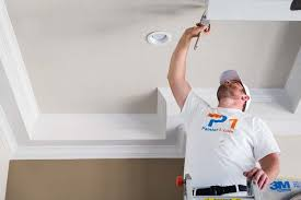 boise popcorn ceiling removal services