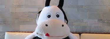 cow stuffie these are cool cow gifts for dairy
