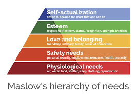 Image result for maslow hierarchy of need