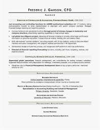 20 Cfo Resume Examples Free Templates Best Resume Templates