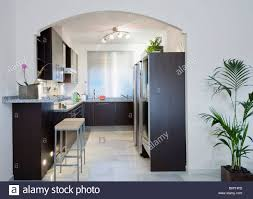 Kitchen With Track Lighting Houseplant Beside Arched Doorway To Modern White Kitchen With