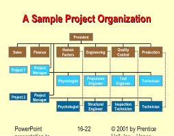 Sample Project Organization Chart 25 Specific Project Organisation Structure Example