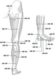 Leg Acupressure Points Chart Top 10 Acupressure Points To Cure Water Retention In Body