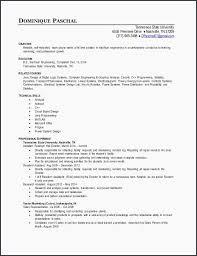 A Resume Format For A Job Classy Discreetliasons Sales Representative Job Description Resume