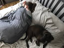 a weighted blanket is exactly what it sounds like it s a blanket sewn into a grid and in each square of the grid is some kind of weight usually plastic