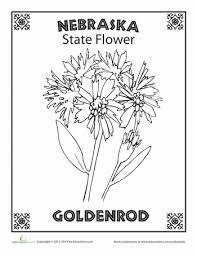 e9183bbeadcbafad03c8e48b0ff5a05f nebraska state flower oregon, of and the o'jays on states worksheets