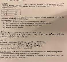 Solved Student Exercise All Of The Insoluble Salts That