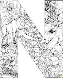 Free Printable Coloring Pages Letter N