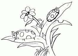 Learn basic or advanced colors! Printable Bugs Coloring Home