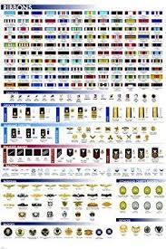 Military Facts Chart Poster Ribbons Insignia Badges Rare Hot