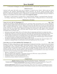 Stunning Credit Analyst Resumes Gallery Simple Resume Office
