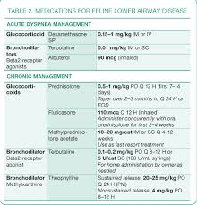 Cerenia Dosing Chart Cats Treatment Of Feline Lower Airway Disease Todays