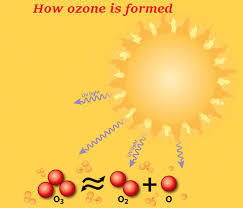 ozone layer essay ozone depletion causes and effects what are the effects of ozone depletion