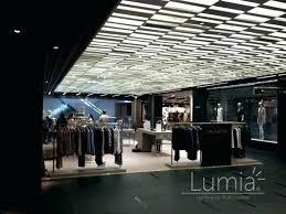 light bulb changer high ceiling bulb changer giraffe motorized light bulb changing