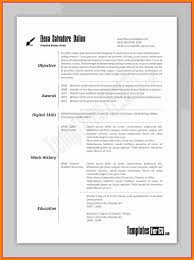 12 Curriculum Vitae For Artist Examples Theorynpractice