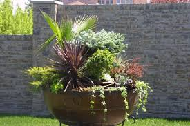 Container Gardening 101 Container Garden Plans Pictures