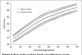 Figure 6 From A Systematic Review And Meta Analysis To