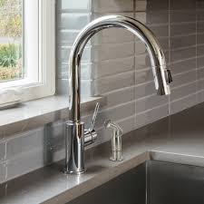 Kitchen Sink Side Spray In Brushed Nickel Plumbing Parts By Danco