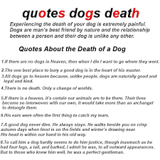 40Betterof Quotes Dogs Death About Grieving And Loss Dog Quotations New Dog Death Quotes