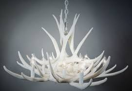 pure white mule deer 9 cast antler chandelier