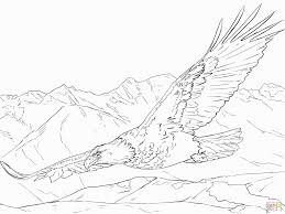 Bald Eagle Coloring Page Lovely 18 New Bald Eagle Coloring Page Free