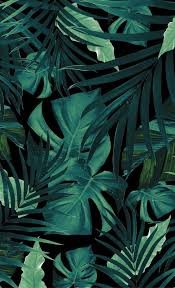 Pin de Araceli Galindo en Обои   Arte de selva, Fondos de pantalla verde,  Fondo de pantalla de hojas
