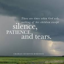 Christian Patience Quotes Best of Quotes About WisdomThere Are Times When God Asks Nothing Of His
