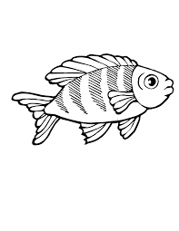 Tuna Fish Coloring Page At Getdrawingscom Free For Personal Use