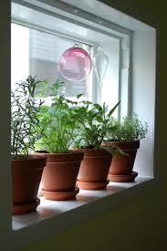 Kitchen Window Herb Garden Kit Window Herb Garden Planter Designs Ideas