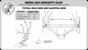 Photo Guide To Scoring Mule Deer Muley Freak