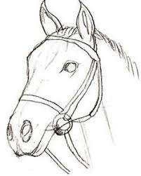 Small Picture The 25 best How to draw horses ideas on Pinterest Horse drawing