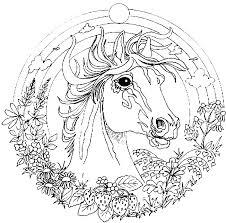 Kids N Fun Kleurplaat Mandala Dieren Mandala Paard