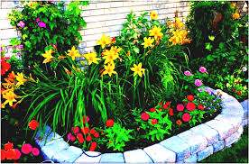 Small Picture Full Size Of Garden Ideas Backyard Design Small Flower Beautiful