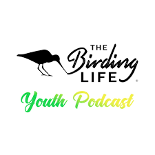 The Birding Life Youth Podcast