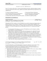 Business Development Manager Cv Template Executive Resume Examples