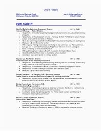 Sales Resumes Examples Lovely Sales Representative Resume Picture