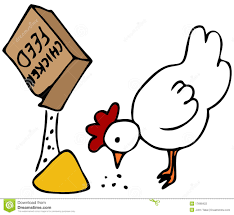 Chicken Feed stock vector. Illustration of minimum, doodle - 17698422
