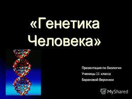 Презентация на тему Генетика Человека Презентация по биологии  1 Генетика Человека Презентация по биологии Ученицы 11 класса Барановой Вероники
