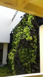 Vertical Garden Green Wall Ahmedabad