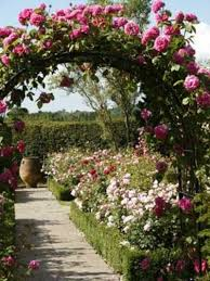 Small Picture rose garden designs for small borders Landscaping Ideas Small