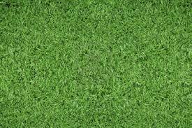 soccer field grass. Soccer-field-grass-patterngreen-grass-background Soccer Field Grass Soccer-Tricks.com