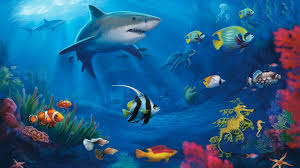 Awesome Animated Fish Tank Wallpaper Free Download Hd Wallpaper