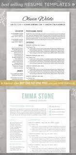 Best 25 Professional Resume Format Ideas On Pinterest Cv Format