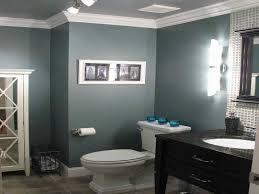 Bathroom Color Combinations  HouzzBathroom Color Combinations