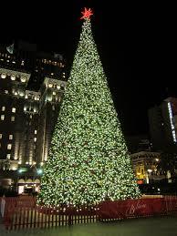 Christmas Trees In San Francisco  Christmas Lights DecorationChristmas Tree In San Francisco